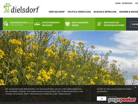 Dielsdorf ZH (CH-8157)